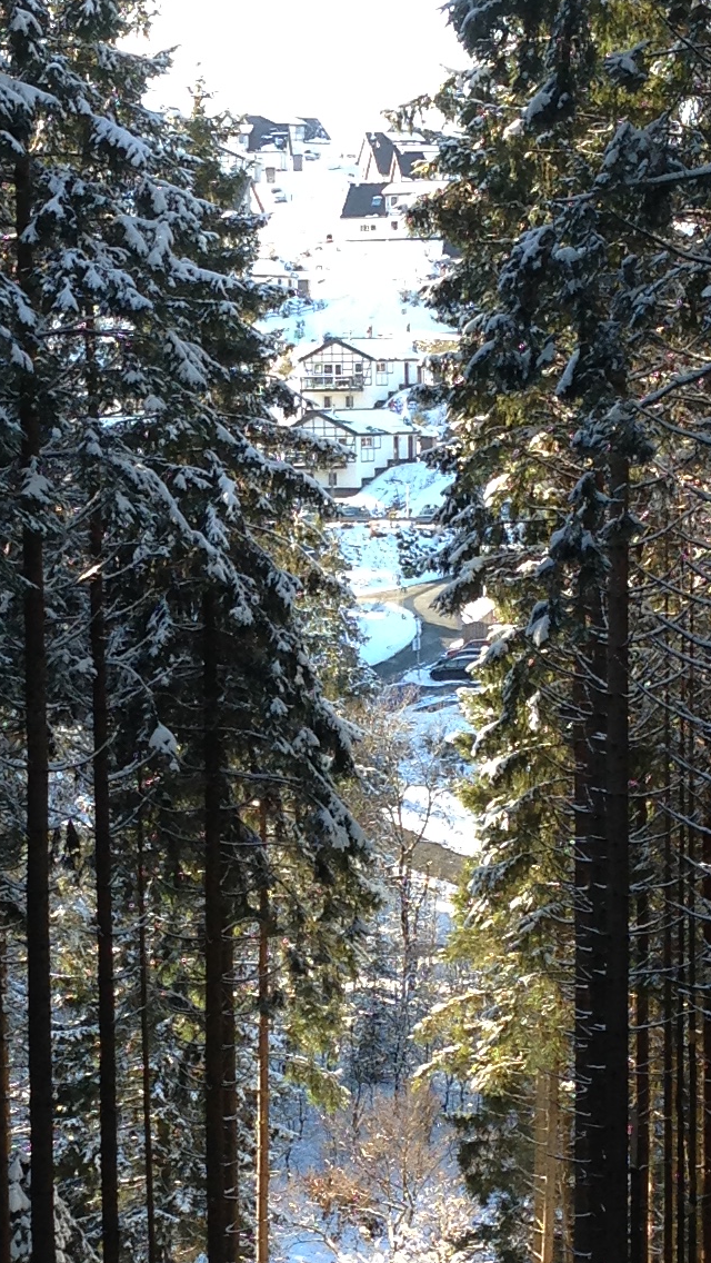 wintersportvakantie winterberg 2016 112